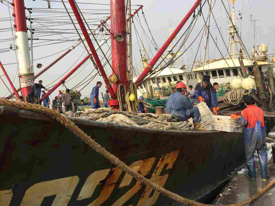 Could A Ban On Fishing In International Waters Become A Reality? : The Salt : NPR