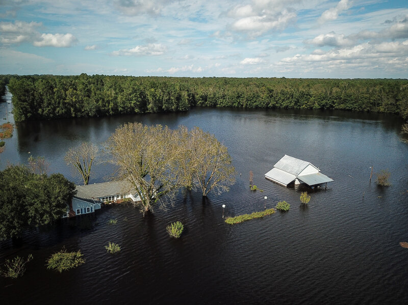 florence engulfs hog farms and chicken houses thrashing north