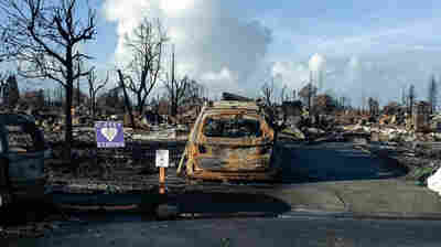 After A Wildfire Destroys Their Home, Family Struggles To Find 'A New Normal'