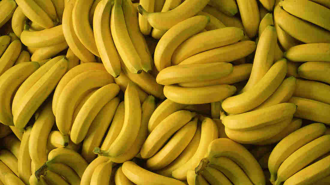 Banana shipment contained almost $18M in cocaine, authorities say