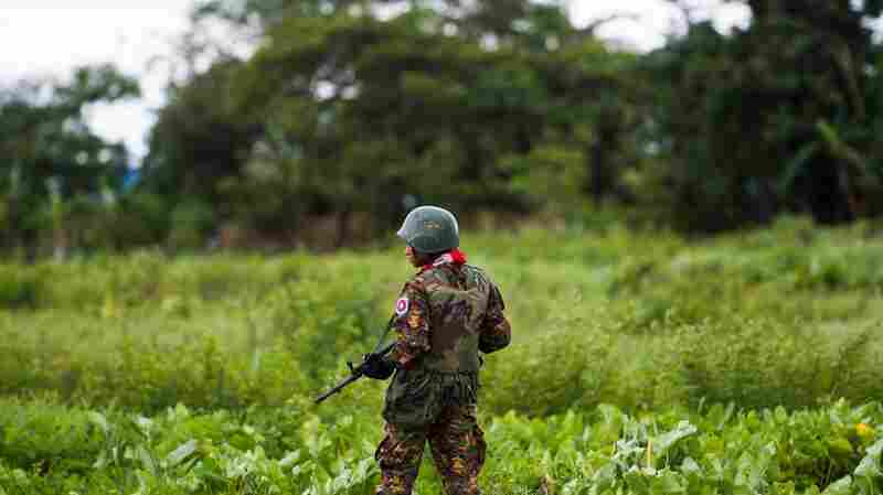 U.S. Won't Label Atrocities Against Rohingya 'Genocide'
