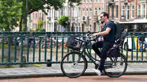 Netherlands Proposes Legislation To Ban Use Of Phones On Bicycles
