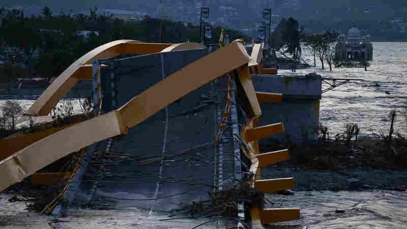 Indonesian Tsunami: Death Toll Hits 1,200; Survivors Desperate For Aid