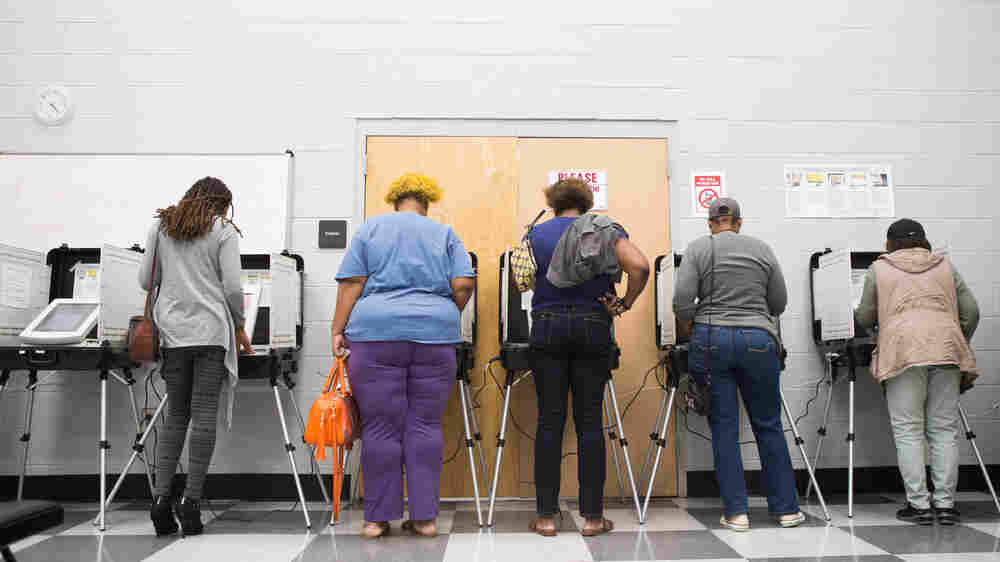 Republican Voter Suppression Efforts Are Targeting Minorities, Journalist Says