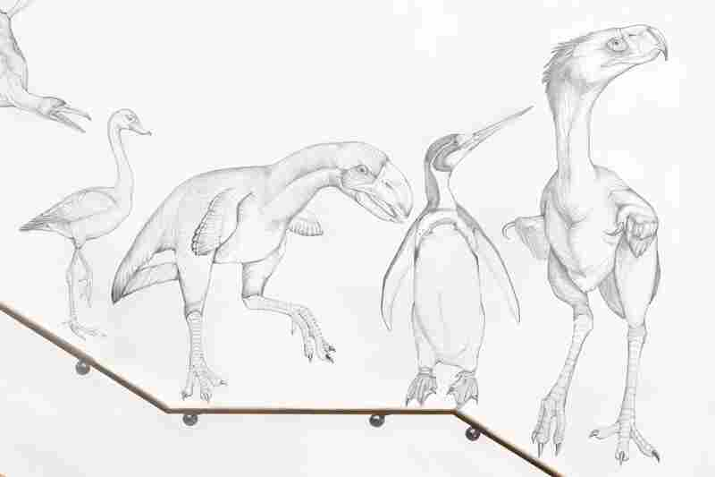 The Wall of Birds also includes the extinct ancestors of modern birds.