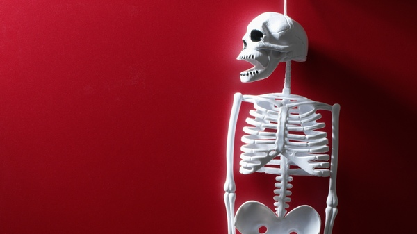 Skeletons are great for Halloween.