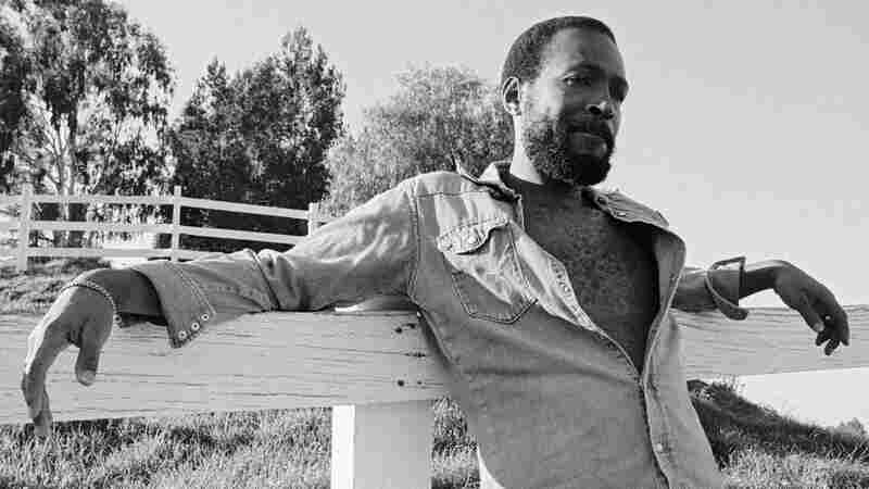 Marvin Gaye at his home in Topanga Canyon, Calif., in 1978.