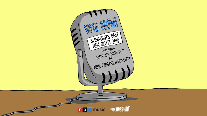 VOTE: Who Is Your Favorite New Musician Of 2018? : NPR