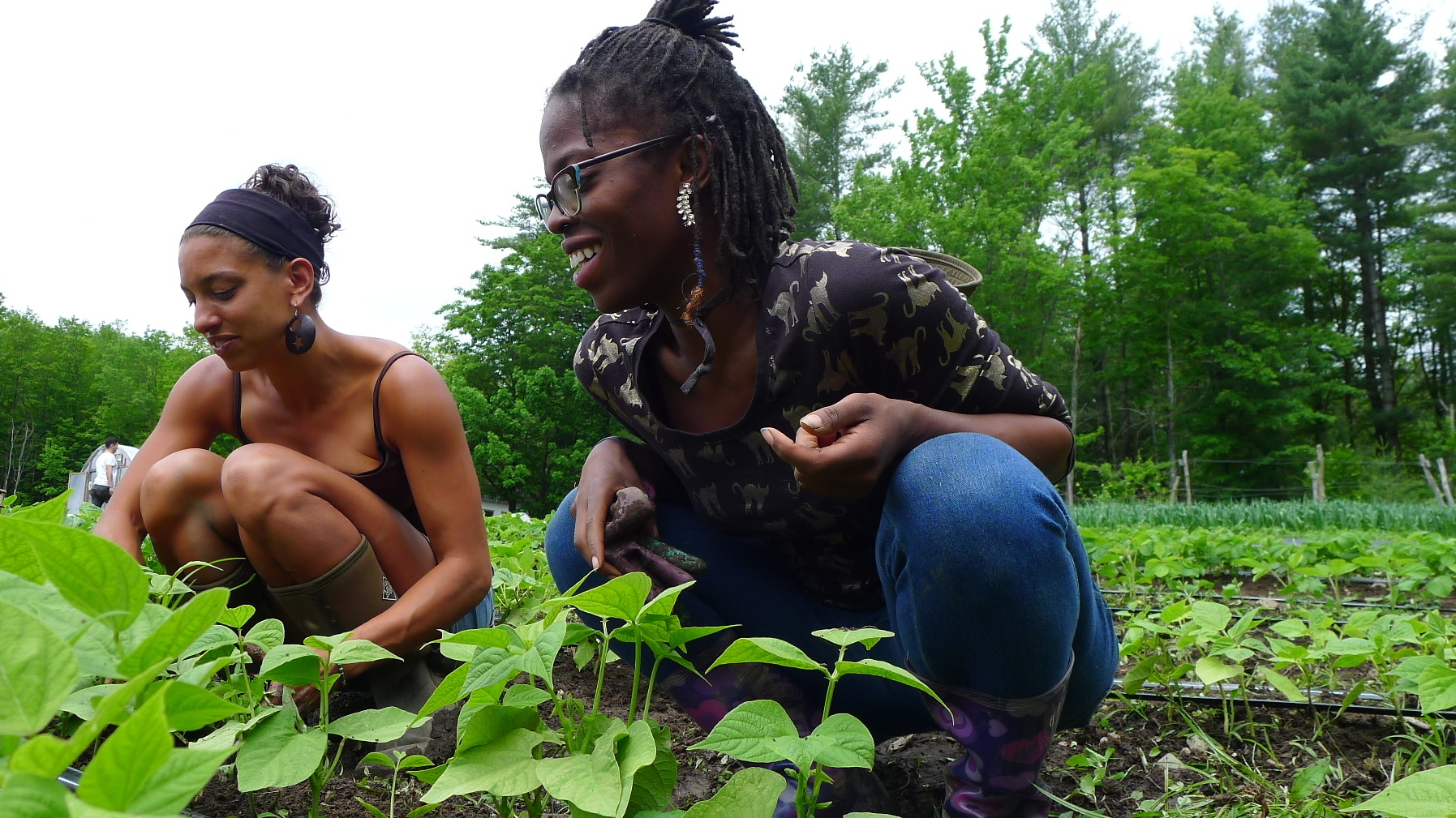 'Farming While Black': A Guide To Finding Power And Dignity Through Food