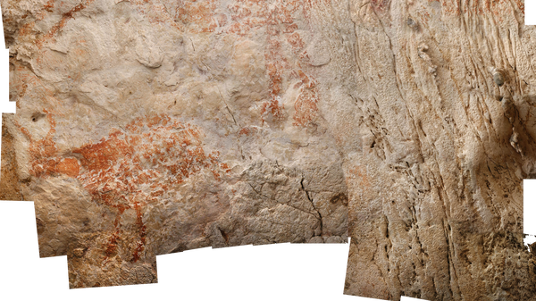 The oldest figurative painting found in caves at the far eastern edge of the island of Borneo depicts a wild cow with horns (lower left) and dates to at least 40,000 years ago — thousands of years older than figurative paintings found in Europe.
