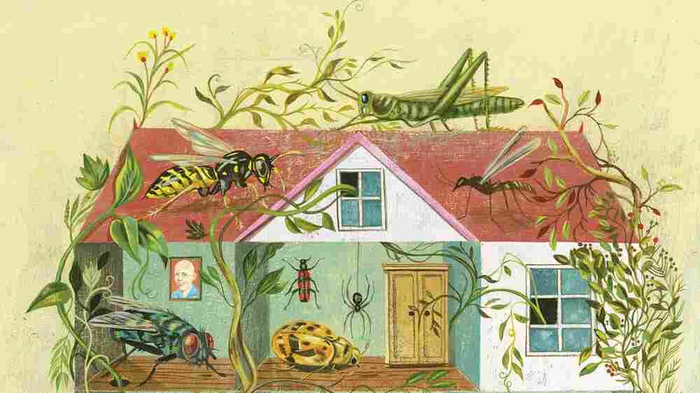 Counting The Bugs And Bacteria, You're 'Never Home Alone' (And That's OK)