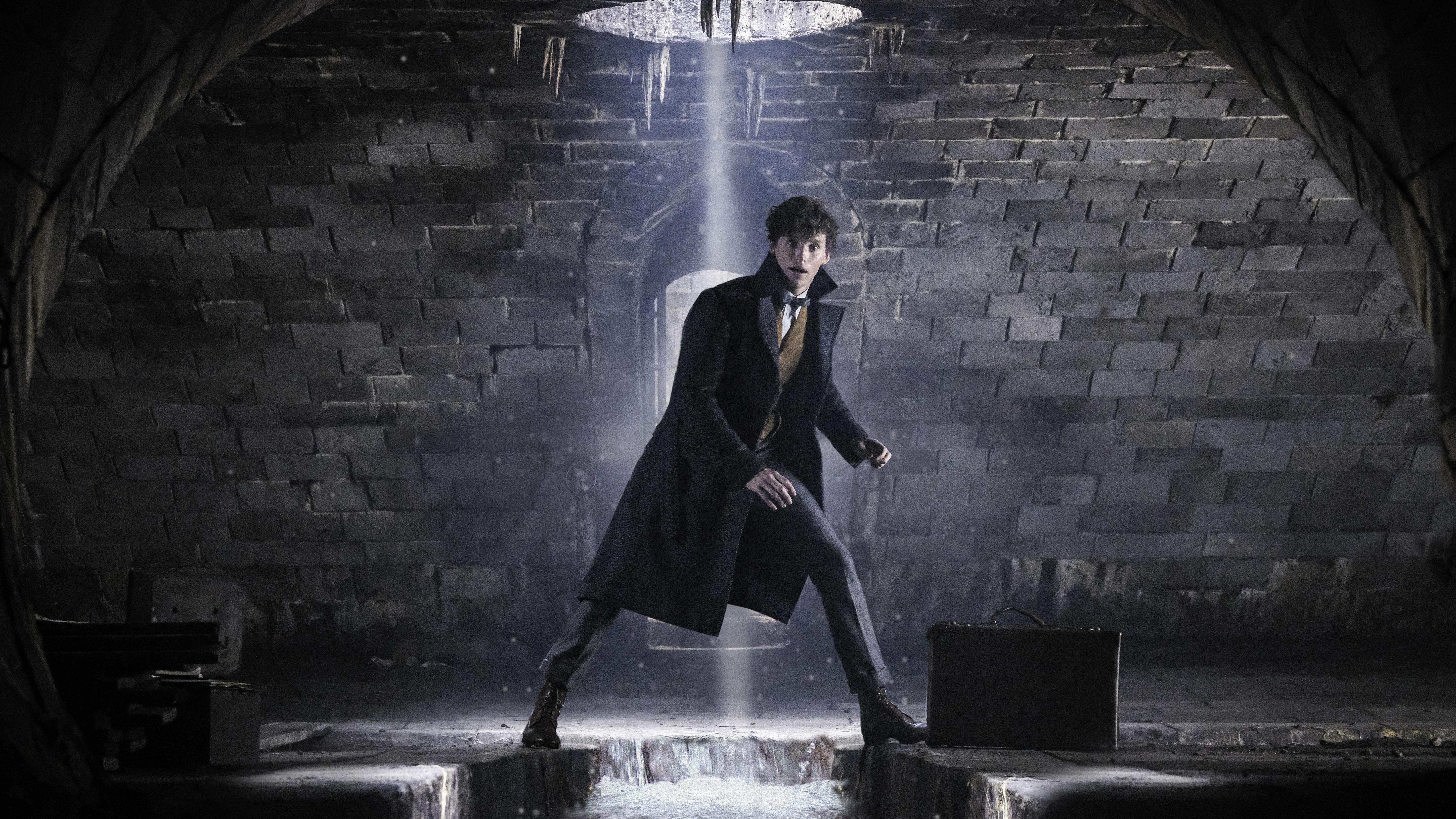 'Fantastic Beasts: The Crimes Of Grindelwald': Beasts? Check. Crimes? Check. Fantastic? Not Quite.