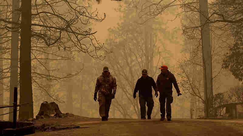 Do You Know Someone Missing As The Camp Fire Burns?