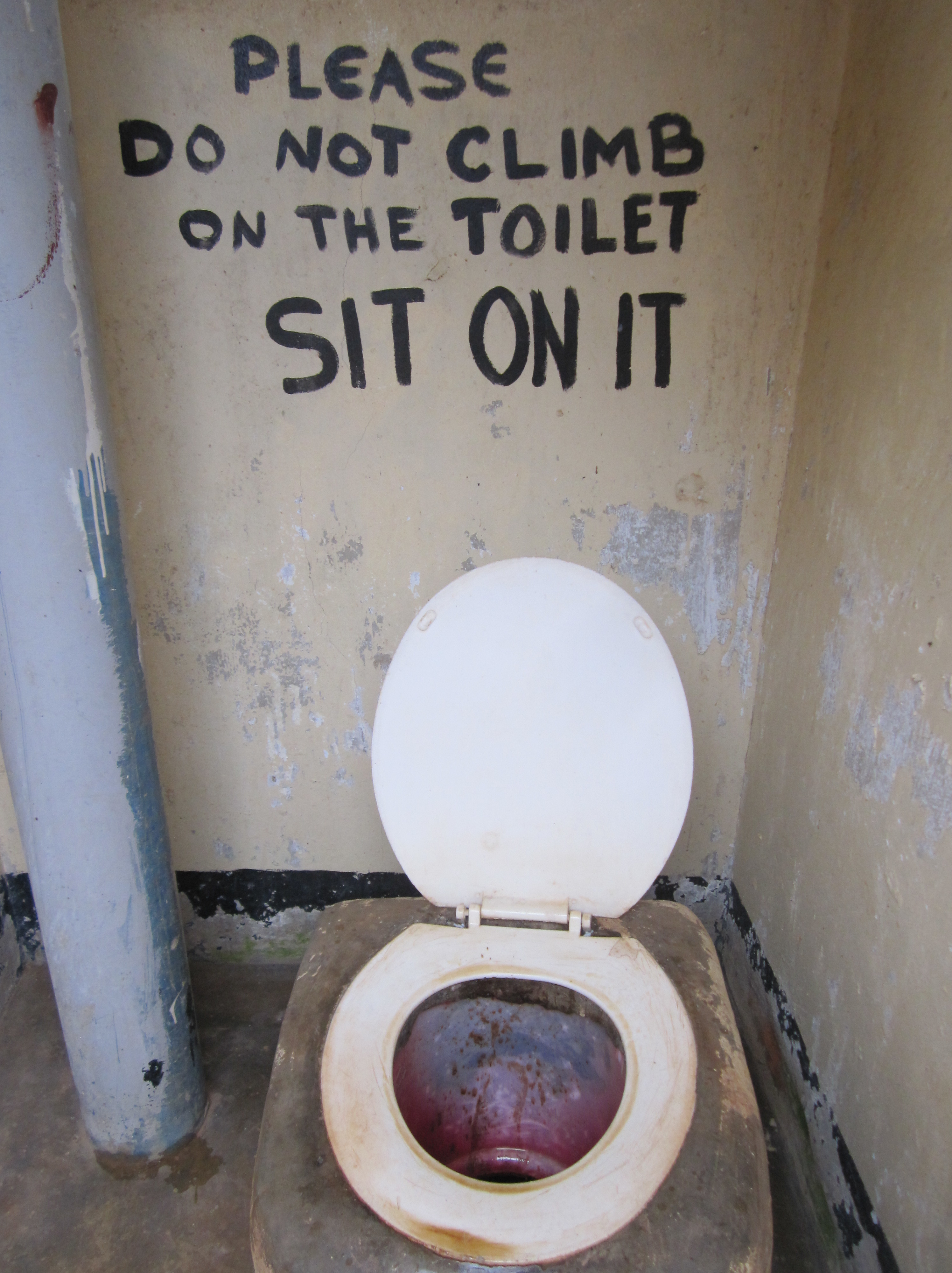 Oh, The Places You'll Go: Toilet Signs Try To Help