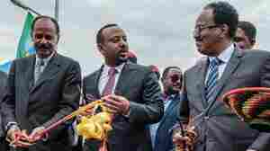 Security Council Votes Unanimously To Lift Sanctions On Eritrea