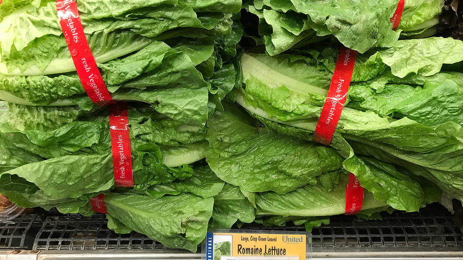 Romaine lettuce is displayed on a shelf at a supermarket in California in April, during an <em>E. coli</em> outbreak traced to contaminated lettuce. The CDC says a new outbreak has made lettuce dangerous to eat, just in time for America's most foodcentric holiday.