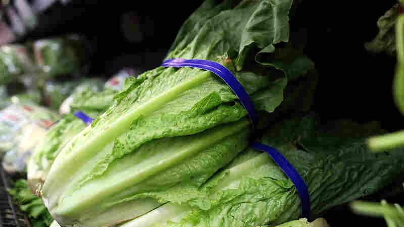 Investigators Tracking Latest Romaine Lettuce Outbreak Are Feeling Some Deja Vu