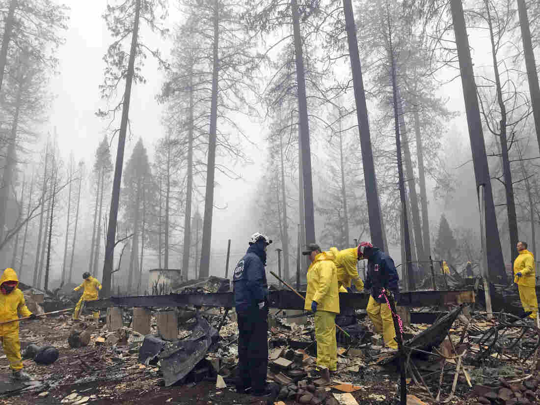New]: Northern California Camp Fire Contained – JomaliaBand