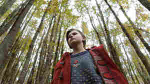 In 'Sicilian Ghost Story,' A Boy Goes Missing — And A Girl Goes Searching