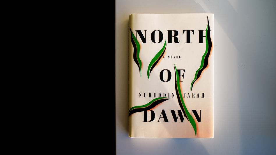 <em>North of Dawn</em>, by Nuruddin Farah