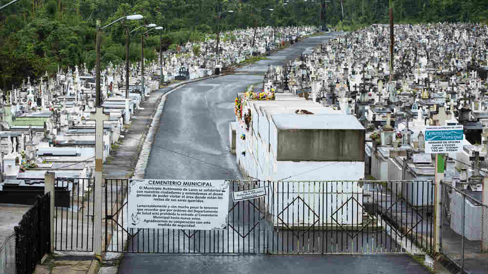 'My Father Is In There': Anguish Builds In Puerto Rico Mountains Over Decimated Tombs