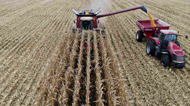 Farm Bill Compromise Reached With SNAP Changes Out, Industrial Hemp In