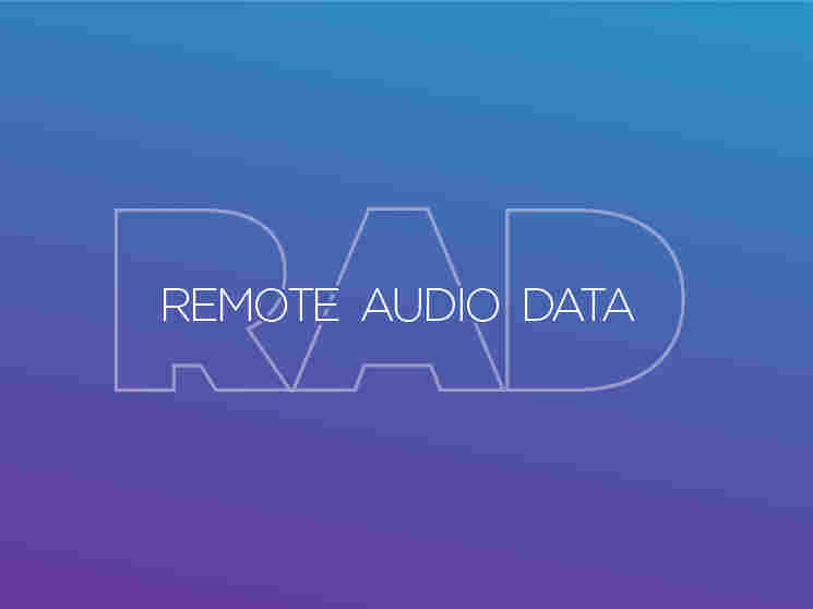 Remote Audio Data logo