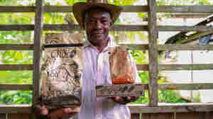 From Cocaine To Cacao: One Man's Mission To Save Colombia's Farmers Through Chocolate