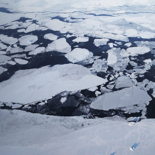 Arctic Report Card Documents 'Cascading Effects' Of Warming Ocean Temperatures