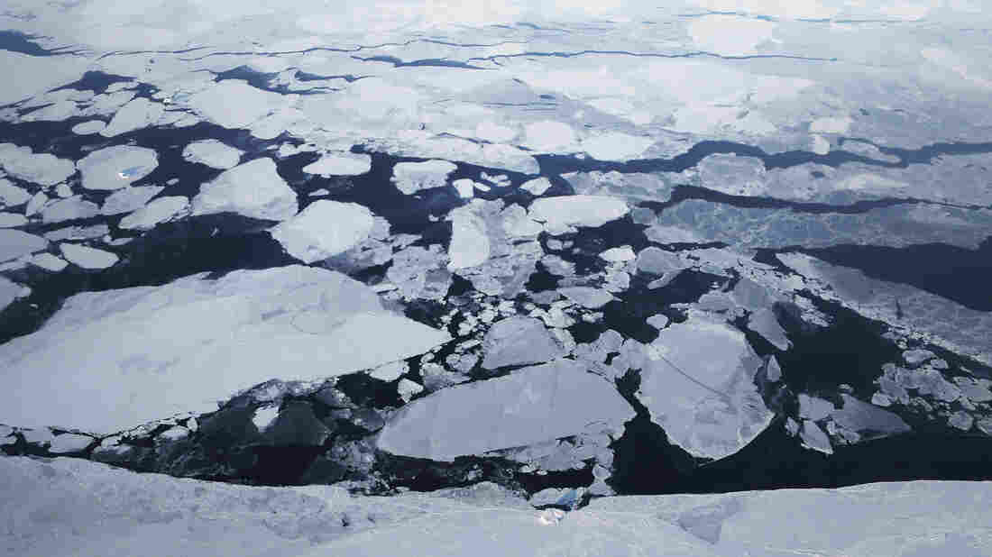 Arctic warming drives 'broad changes' in environment U.S. study