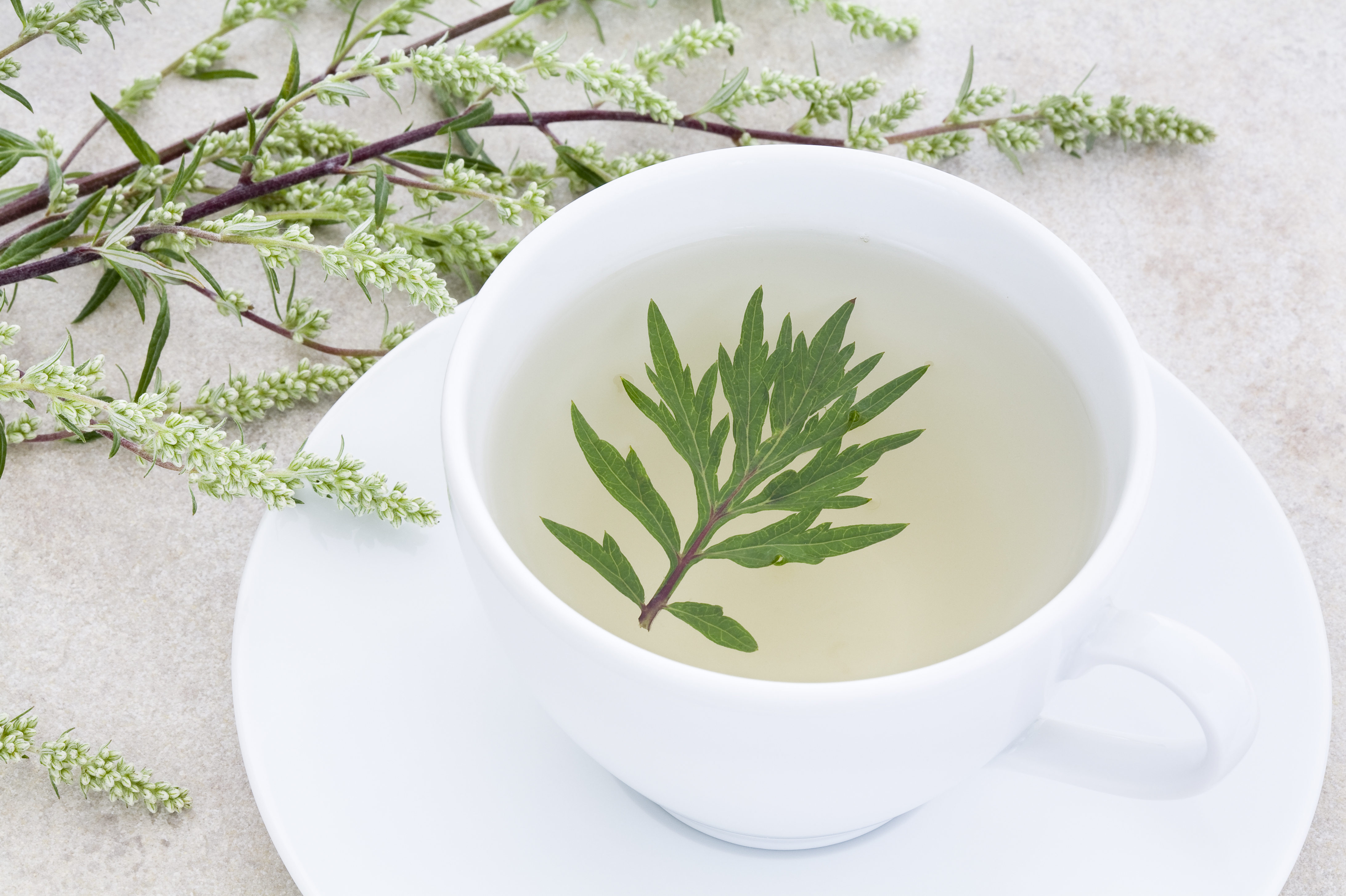 If A Worm Makes You Sick, Can This Cup Of Tea Cure You?