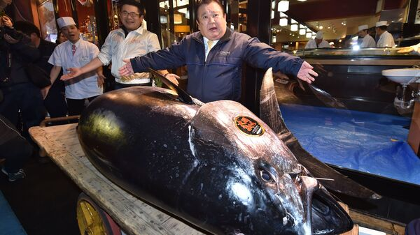 Kiyoshi Kimura, president of sushi restaurant chain Sushi Zanmai, displays a 612 pound bluefin tuna at one of his restaurants. The company he runs paid a record $3.1 million for the popular but threatened fish.