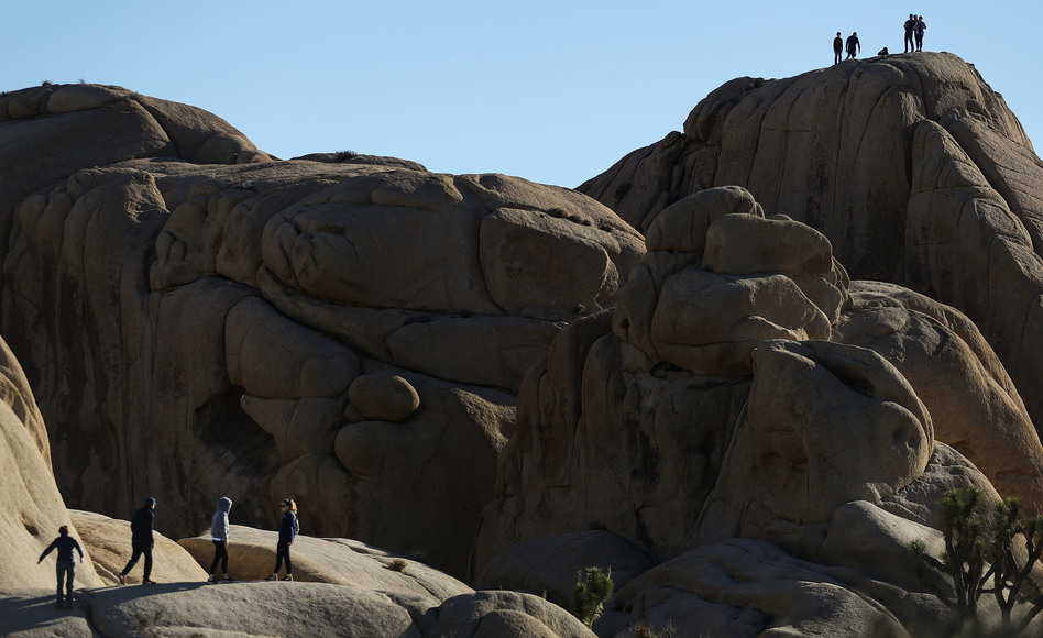 During the shutdown, visitors walk and stand atop rock formations at Joshua Tree National Park on Friday. (Mario Tama/Getty Images)