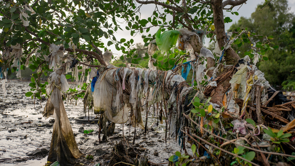 An Island Crusader Takes On The Big Brands Behind Plastic Waste
