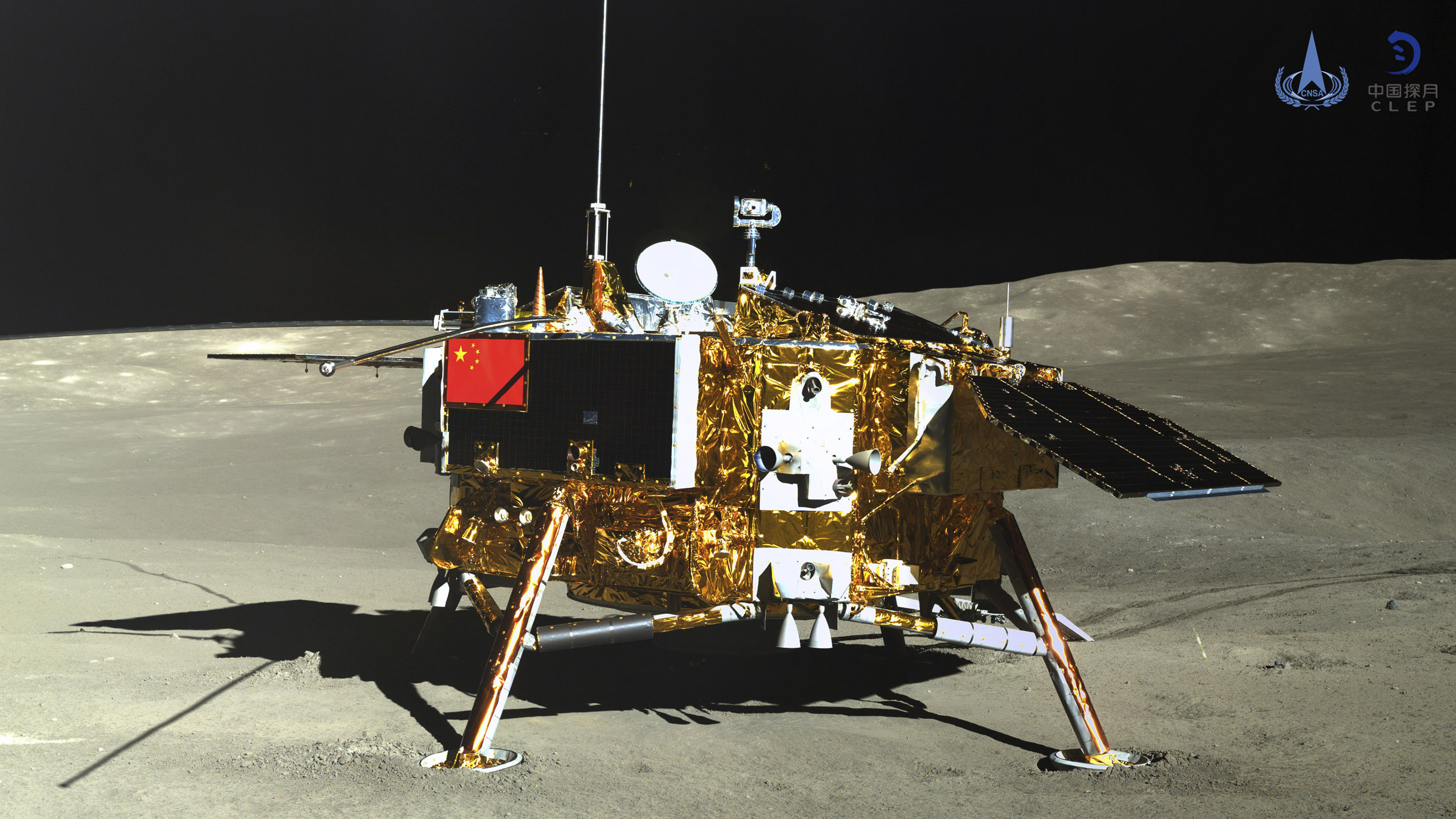 Cotton Seed Sprouts In China's Lunar Lander