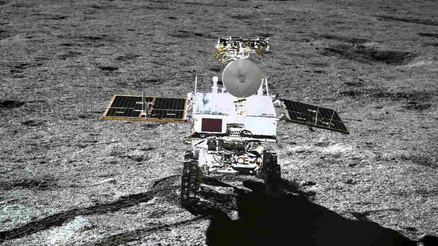 China Tried To Grow Cotton On The Moon, But It Didn't Work