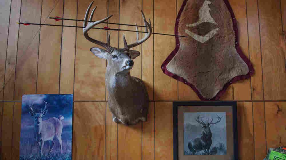Shooting Bambi To Save Mother Nature