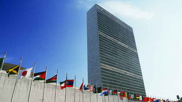 Report Says 1 In 3 U.N. Staffers Has Been Sexually Harassed
