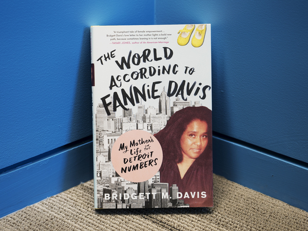 The World According To Fannie Davis My Mothers Life In The Detroit