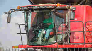 Is Fear Driving Sales Of Monsanto's Dicamba-Proof Soybeans?