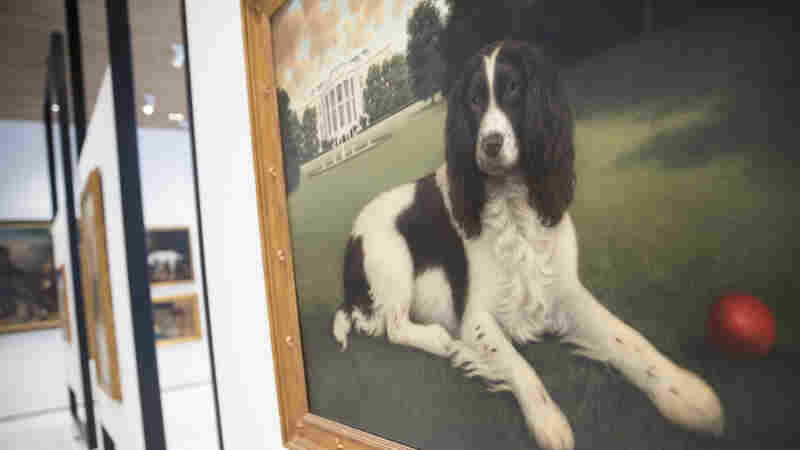 Dogs Have Their Day: AKC Dog Museum Opens In New York City