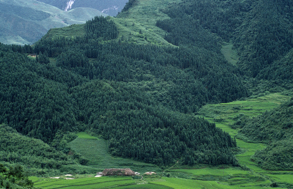 A landscape with a reforestation project in Gongxian County in Sichuan, China.