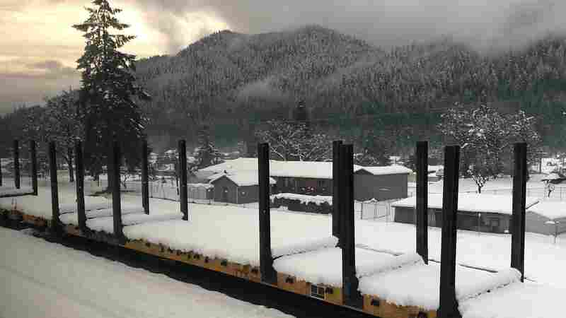 183 Amtrak Passengers Rescued After 36 Hours Stranded In Oregon Amid Heavy Snow