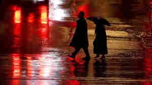 Pedestrian Deaths Reach Highest Level In Decades, Report Says