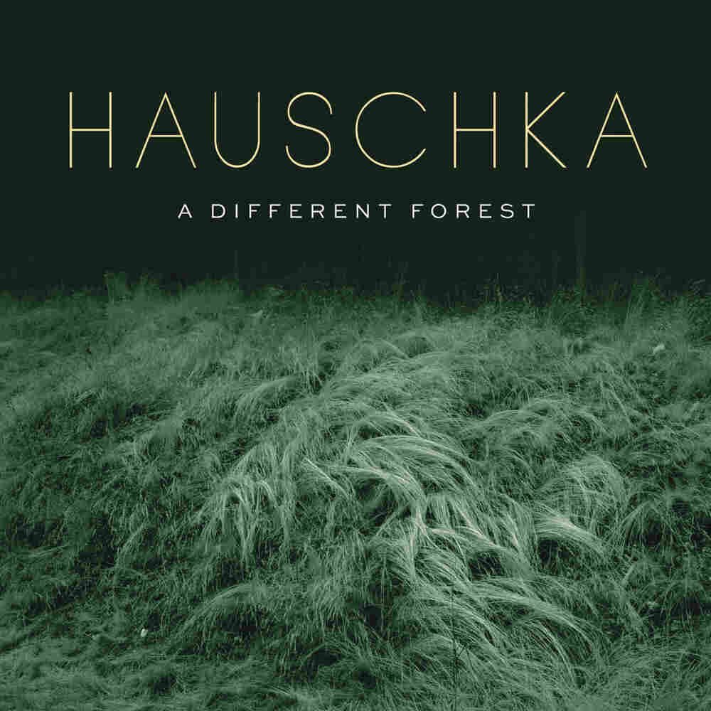 Hauschka, A Different Forest