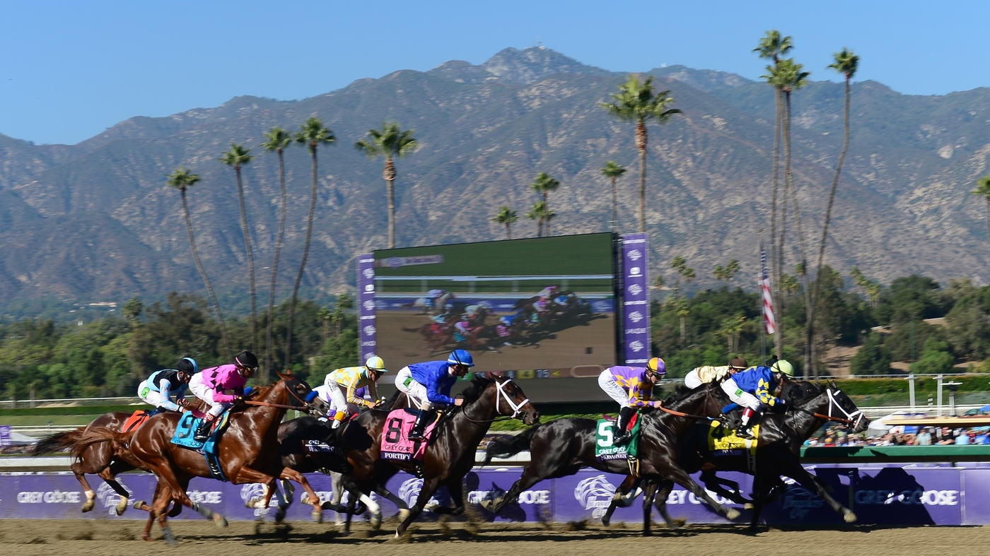 Santa Anita Horse Deaths No Clear Answer From Experts Npr
