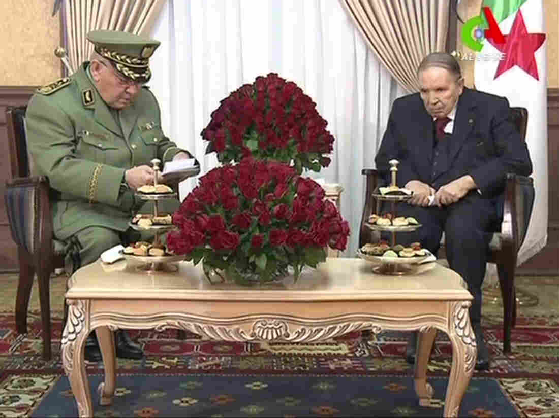 Algeria: President Bouteflika finally promises to stand down