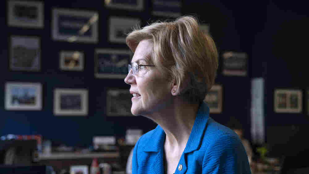 Sen. Elizabeth Warren Blasts Big Tech, Advocates Taxing Rich In 2020 Race