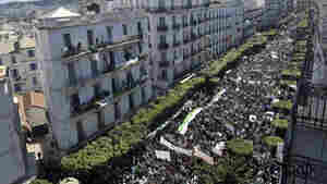 Protests Mount In Algeria, Even As President Promises Transitional Government