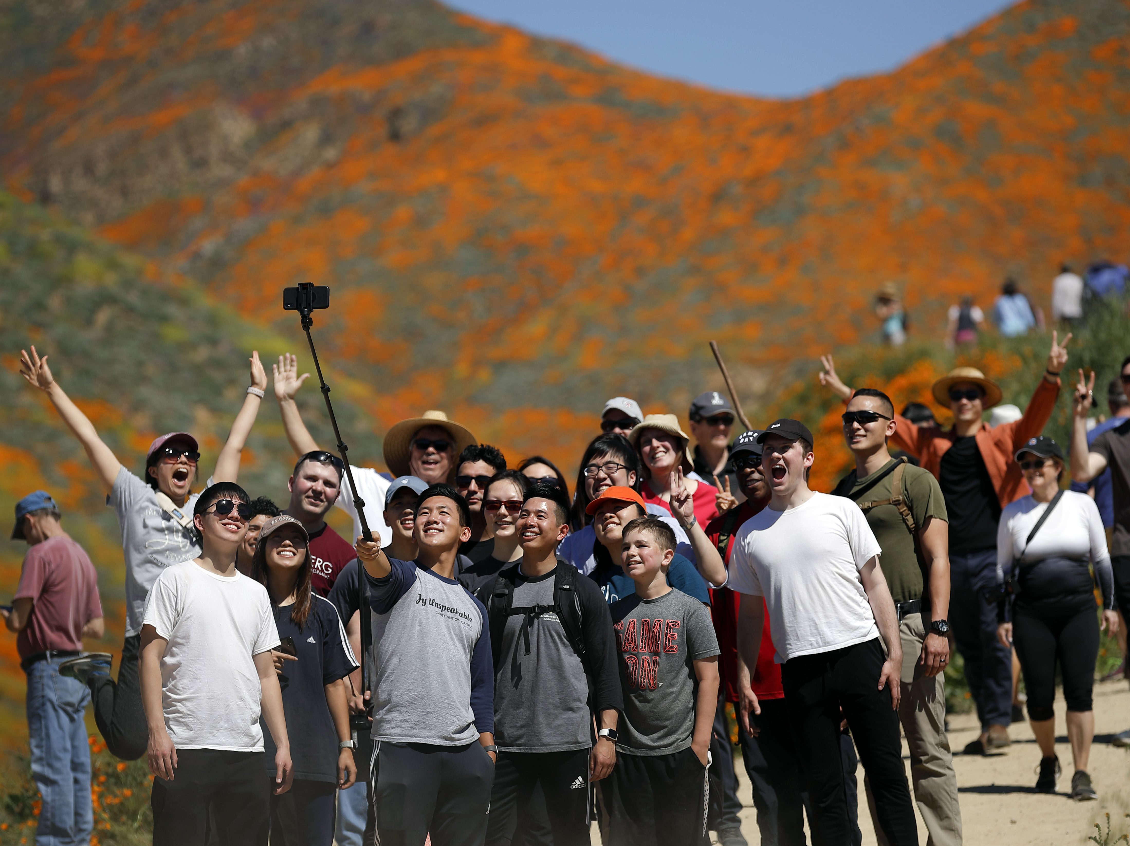 'Poppy Apocalypse': California City Swarmed By Selfie Stick-Toting Tourists